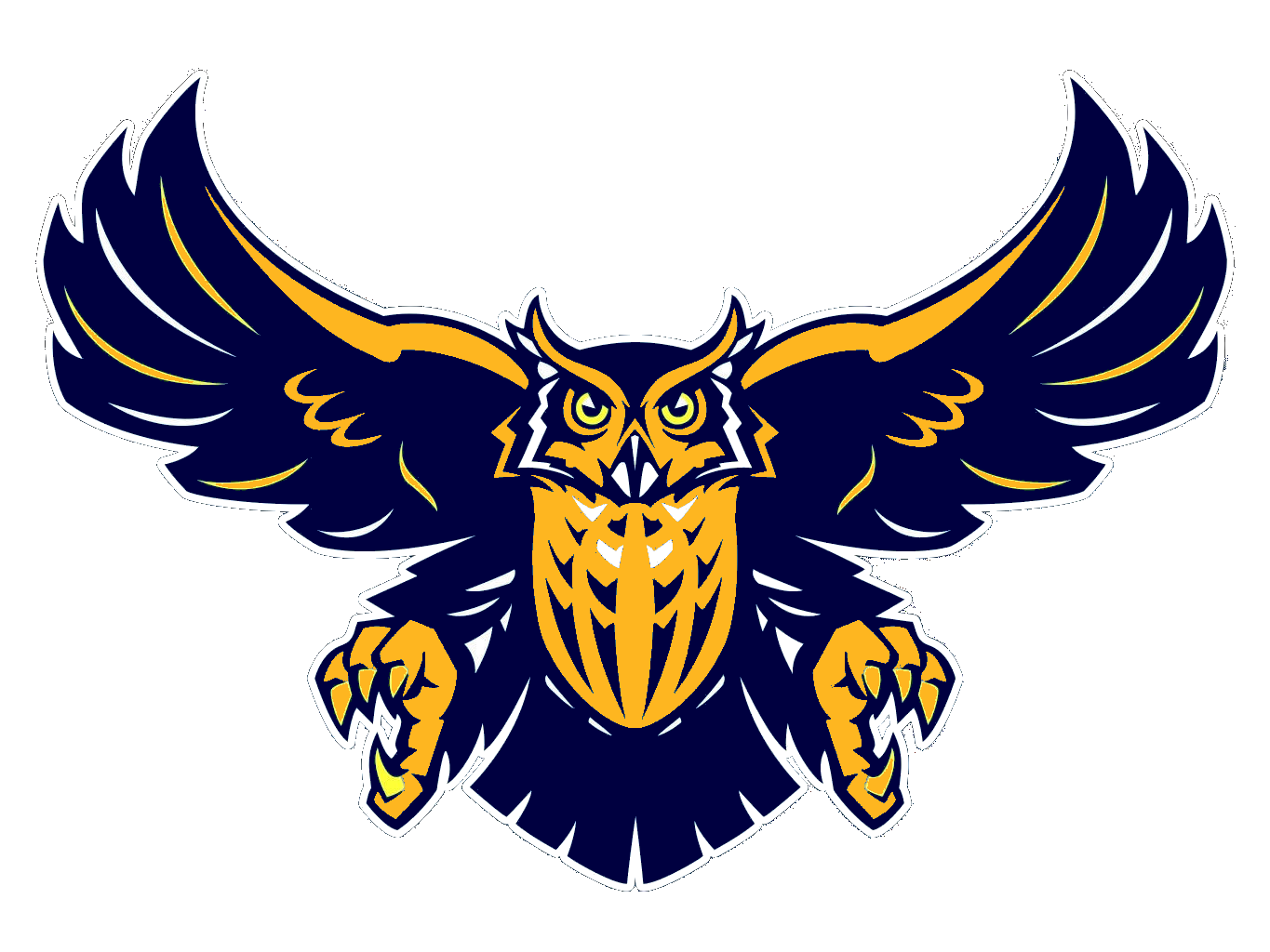 1365x1024 Owl Navy Blue Free Images