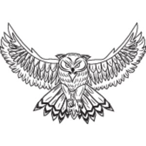 300x300 Owl Logo, Vector Logo Of Owl Brand Free Download (Eps, Ai, Png