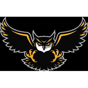 300x300 Firebirds Sports Logo Vector