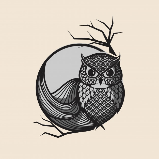 626x626 Owl Vector Vectors, Photos And Psd Files Free Download