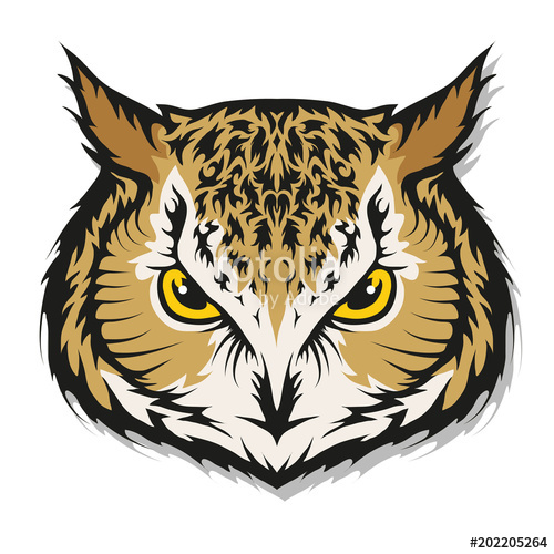 500x500 Owl Logo. Wild Birds Drawing. Head Of An Owl. Vector Graphics To