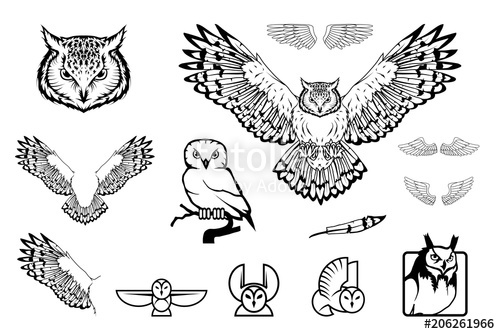 500x334 Set Of Owl Logo. Wild Birds Drawing. Head Of An Owl. Vector
