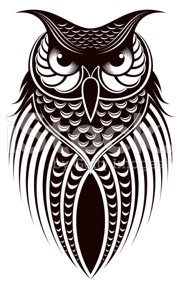 353x556 Owl Vector 3 An Images Hub