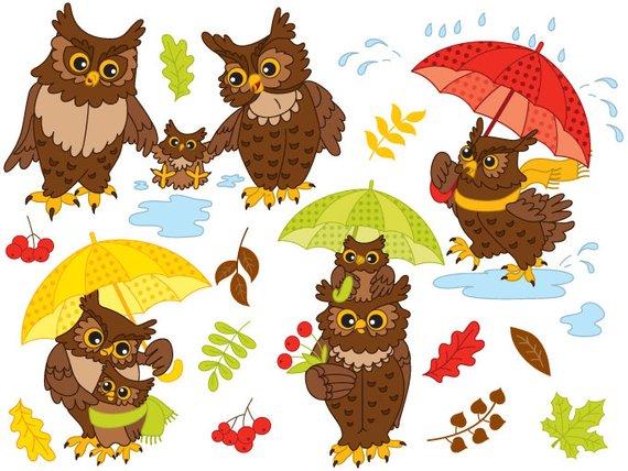 570x428 Autumn Owls Clipart Digital Vector Owls Autumn Leaf Etsy
