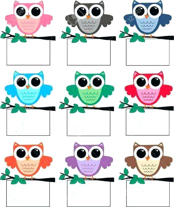 564x670 Free Printable Owl Clip Art Illustration Of Owls Vector Art And