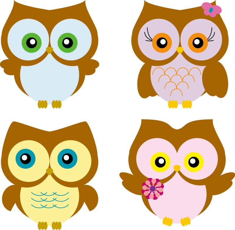 800x780 Cartoon Owl Vector Free Backgrounds Screensavers