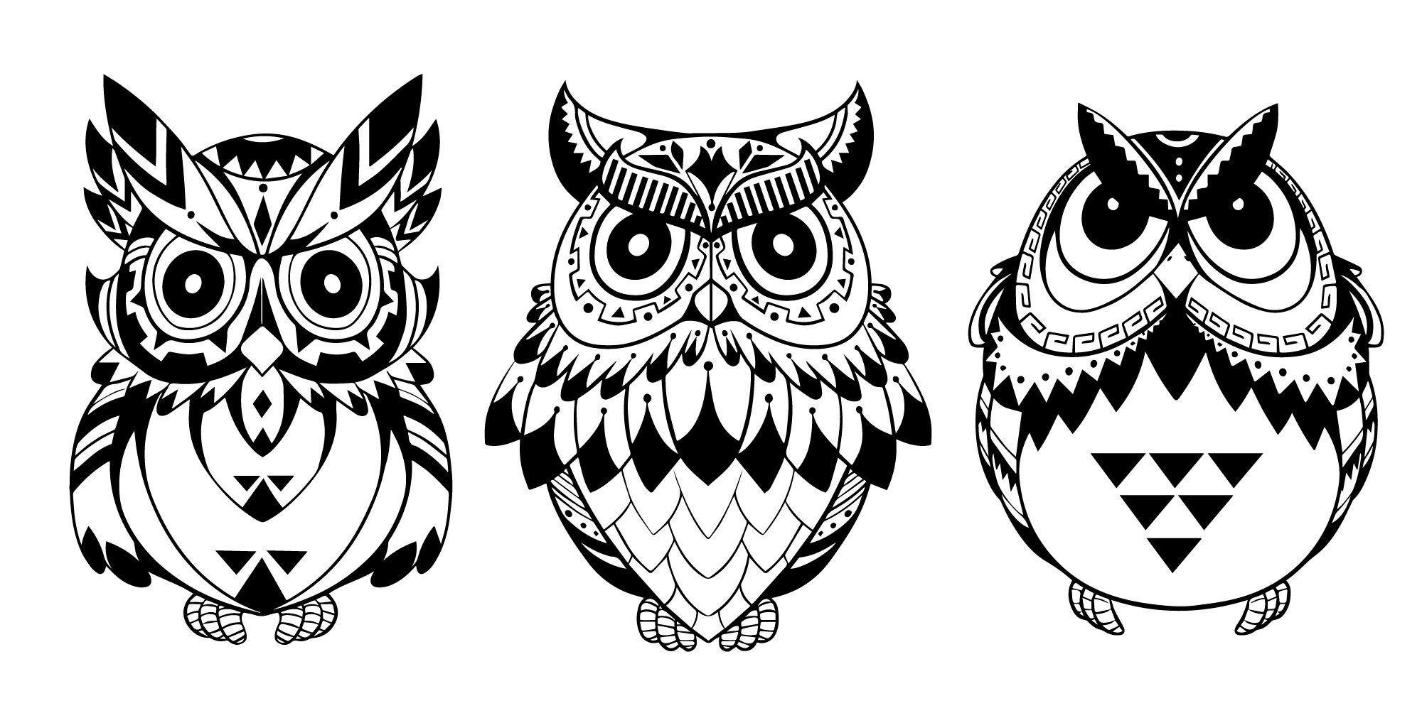 2000x1004 Owls Vector Art Free Vector Download
