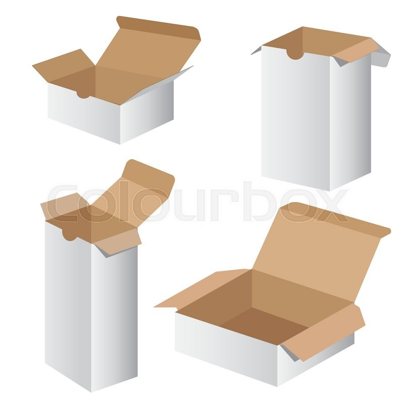 800x800 Collection Box Packaging Design. Vector Collection Box Packaging