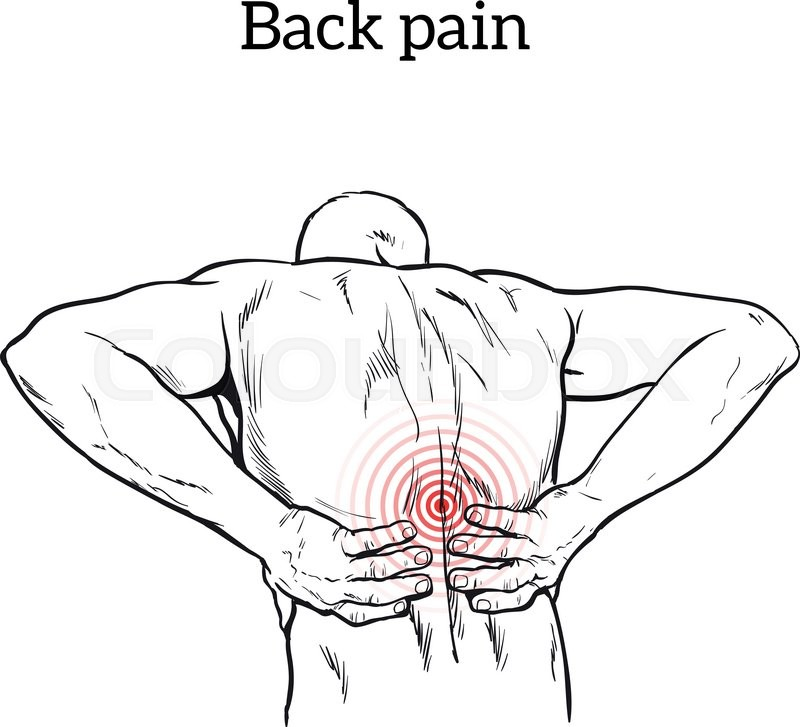 800x727 Lumbar Pain In A Man Back Pain In A Human Vector Outline Sketch