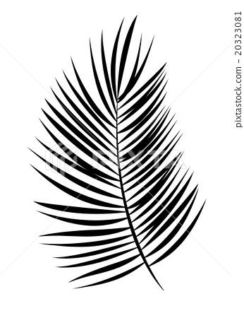 346x450 Palm Leaf Vector Background Illustration
