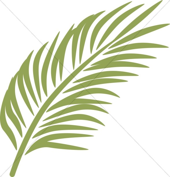 589x612 Single Palm In Calming Green Palm Sunday Clipart
