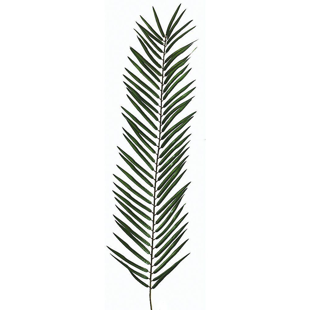 1000x1000 Palm Branch Vector