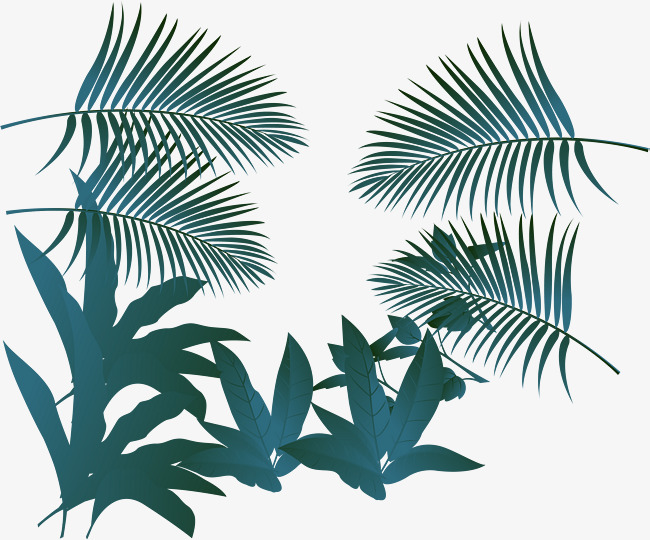 650x540 Palm Leaf Vector, Palm Vector, Leaf Vector, Palm Leaf Png And