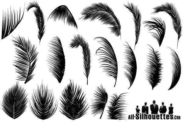 600x400 Palm Leaves Vector Free 123freevectors