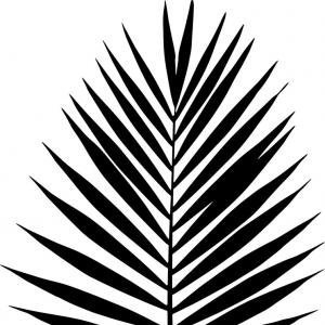 300x300 Photostock Vector Palm Leaf Vector Illustration Black And White