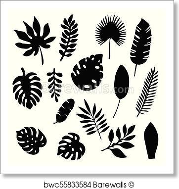 362x382 Art Print Of Palm Leaves Silhouettes Set Isolated On White