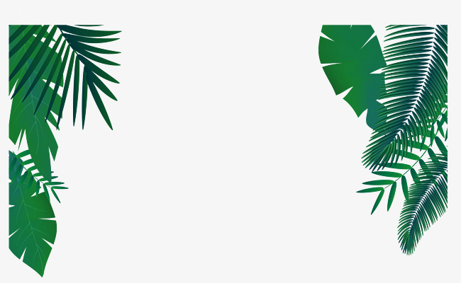 650x400 Green Palm Leaf Decoration Vector, Palm Leaf Vector, Green Vector