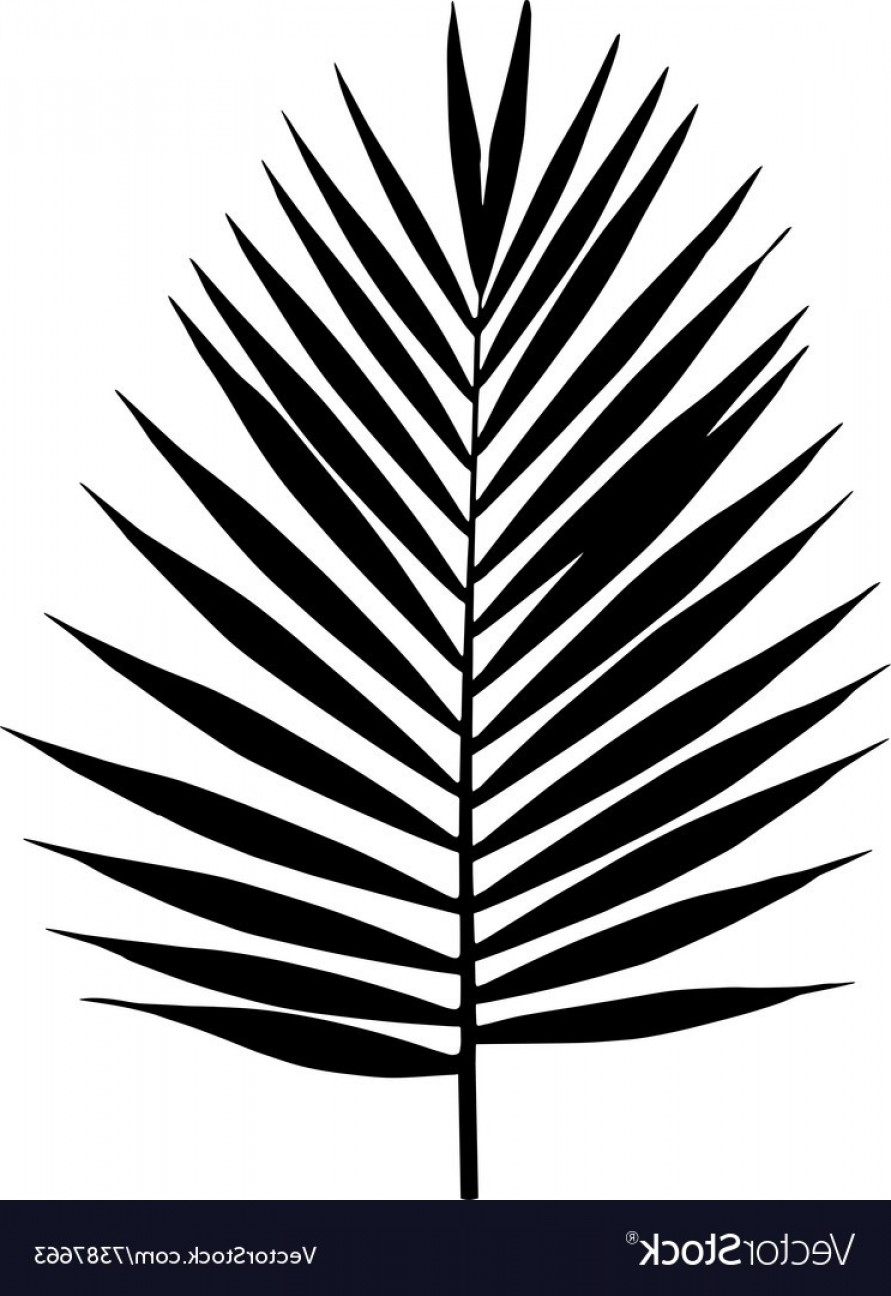 891x1296 Palm Leaf Silhouette Tropical Leaves Vector Shopatcloth