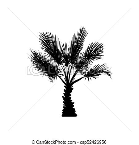 450x470 Vector Sketch Palm Tree. Hand Drawn Silhouette Palm Tree Clipart