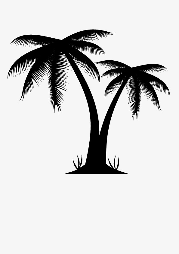 595x842 Palm Tree, Palm Vector, Tree Vector, Tree Clipart Png And Vector
