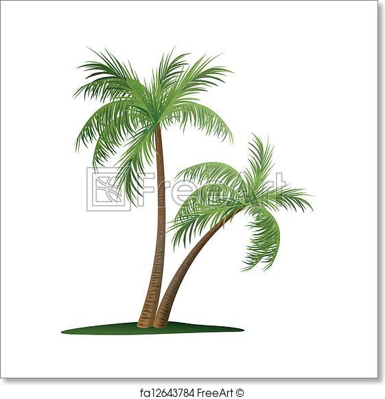 561x581 Free Art Print Of Two Palm Trees. Vector Illustration Of Two Palm