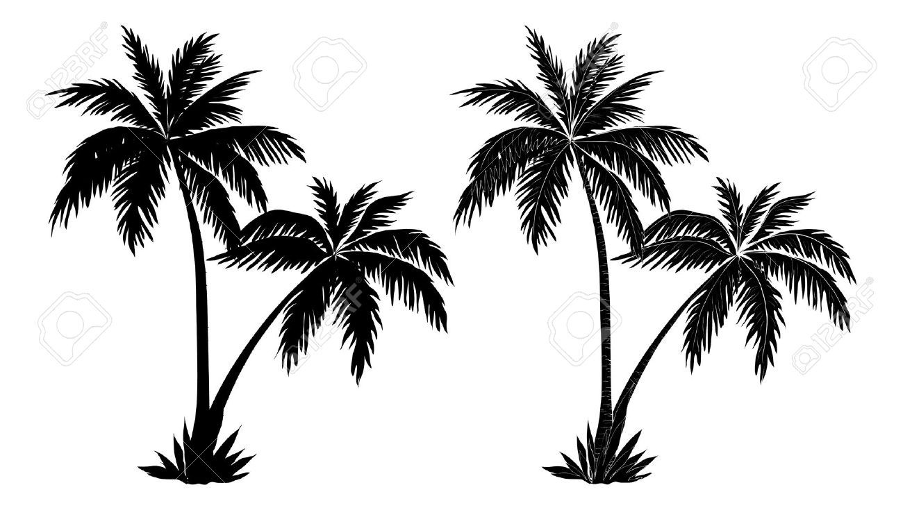 1300x735 Image Result For Palm Tree Vector Tattoo Reference