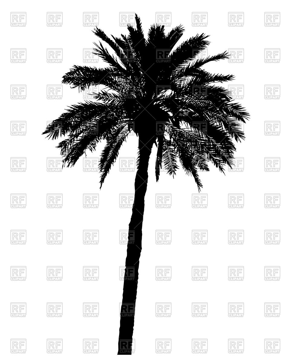 933x1200 Palm Tree Black Silhouette Vector Image Vector Artwork Of Plants
