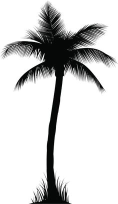236x408 Realistic Palm Tree Silhouette