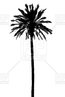266x400 Silhouette Of Palm Tree Vector Image Vector Artwork Of Plants