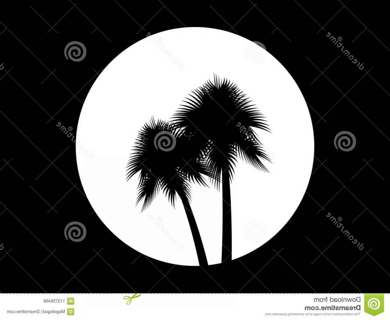 1560x1278 Two Palm Trees Background Full Moon Black White Logo Tropical