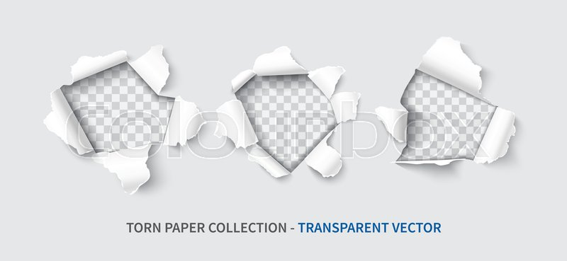 800x369 Paper Hole Set Realistic Vector Illustration Isolated On