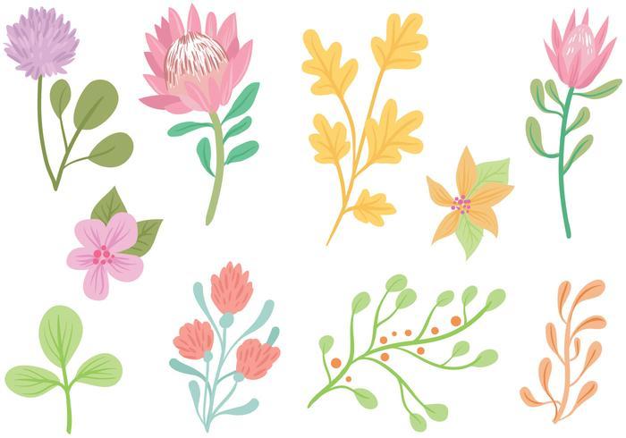 700x490 Free Pastel Flowers Vectors