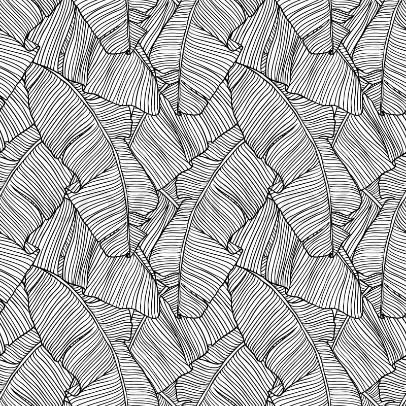 800x800 Vector Illustration Leaves Of Palm Tree Seamless Pattern Stock