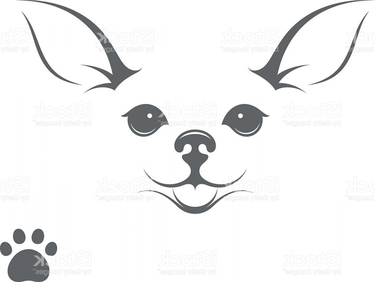 1228x924 Cute Chihuahua Dog Happy Puppy With Paw Print Gm Lazttweet