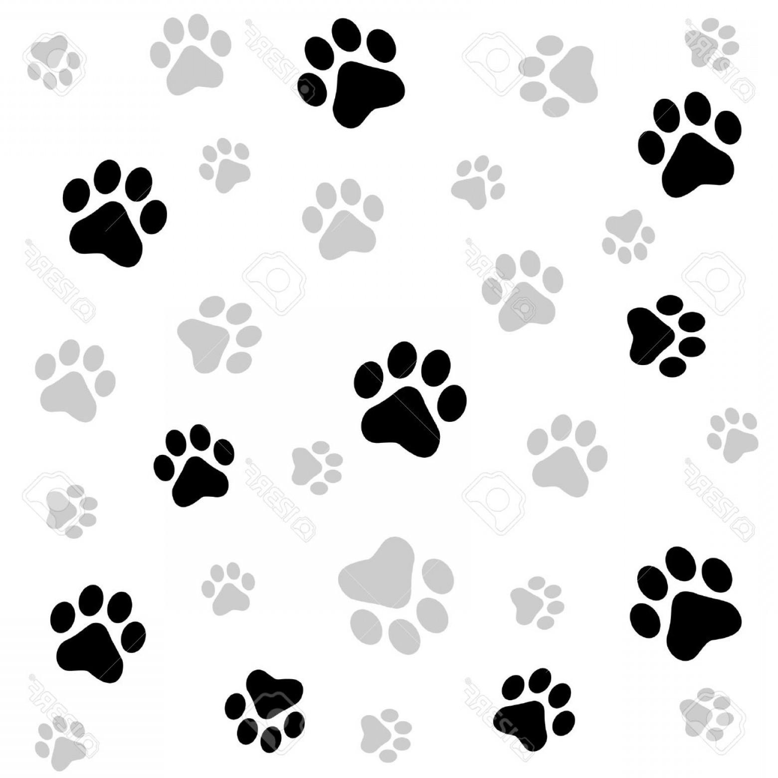 1560x1560 Photostock Vector Dog Paw Print Seamless Pattern On White