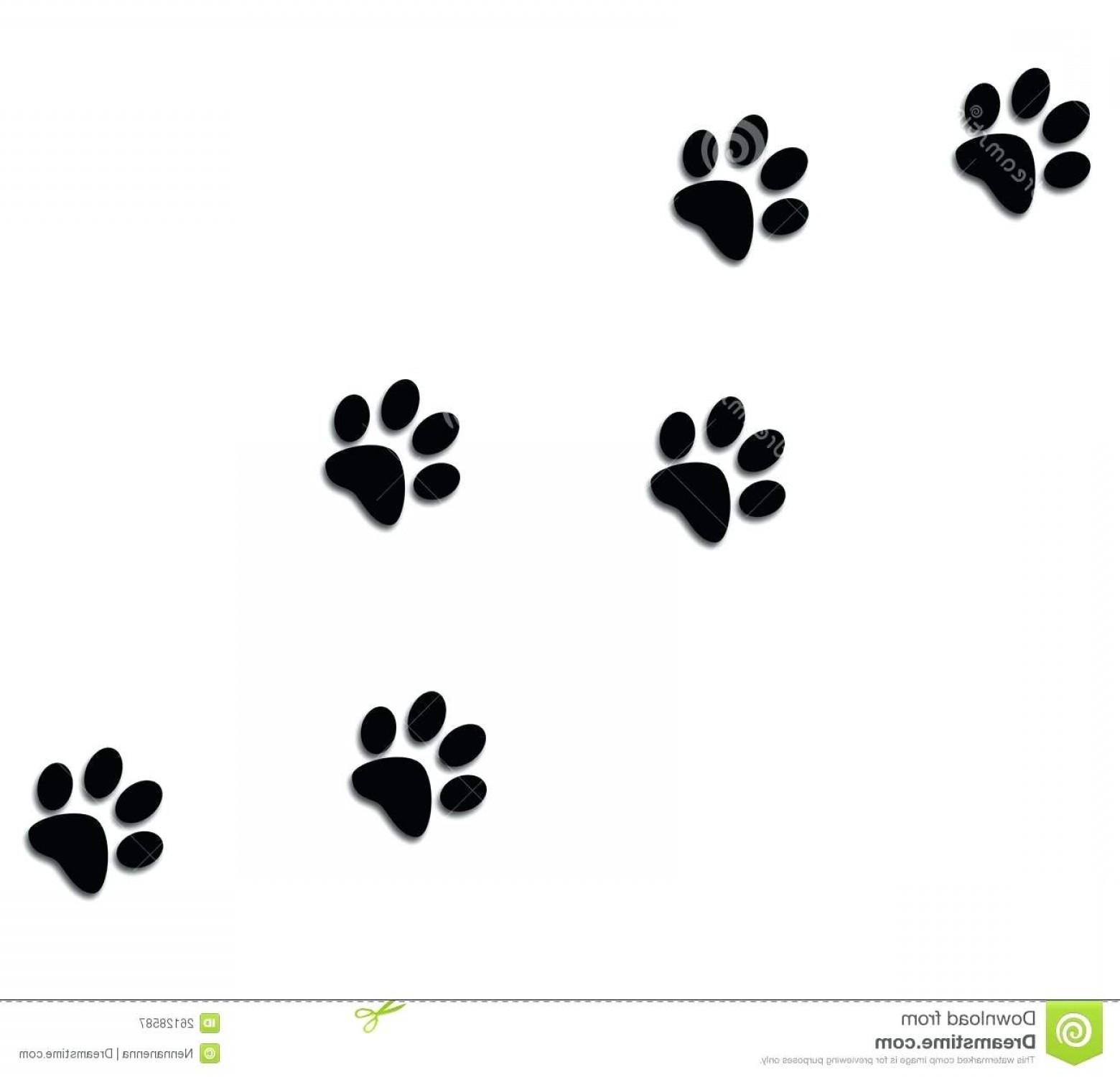1560x1500 Printable Bobcat Paw Prints Dog Clip Art Image Sohadacouri
