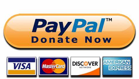 474x270 Paypal Donate Button Vector. Donate Now Paypal And Cards Button