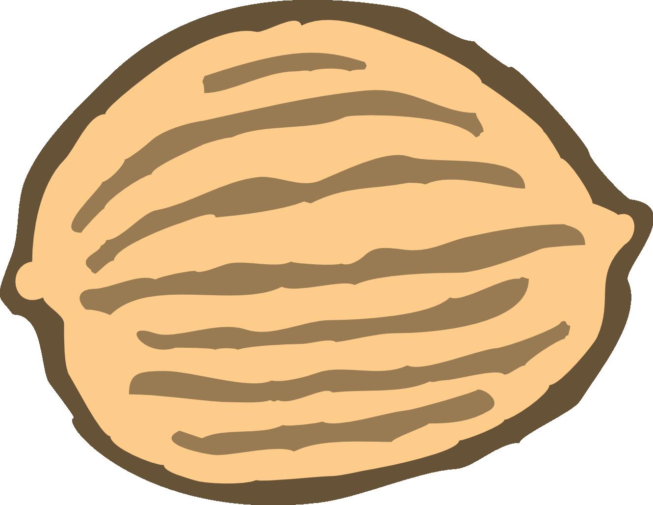 Peanut Vector