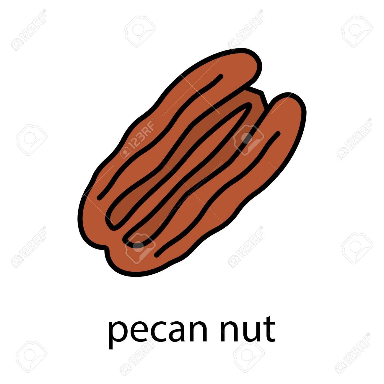 1300x1300 Nut Clipart Pecan