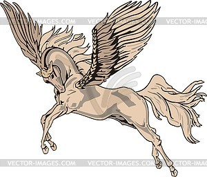 300x256 Pegasus