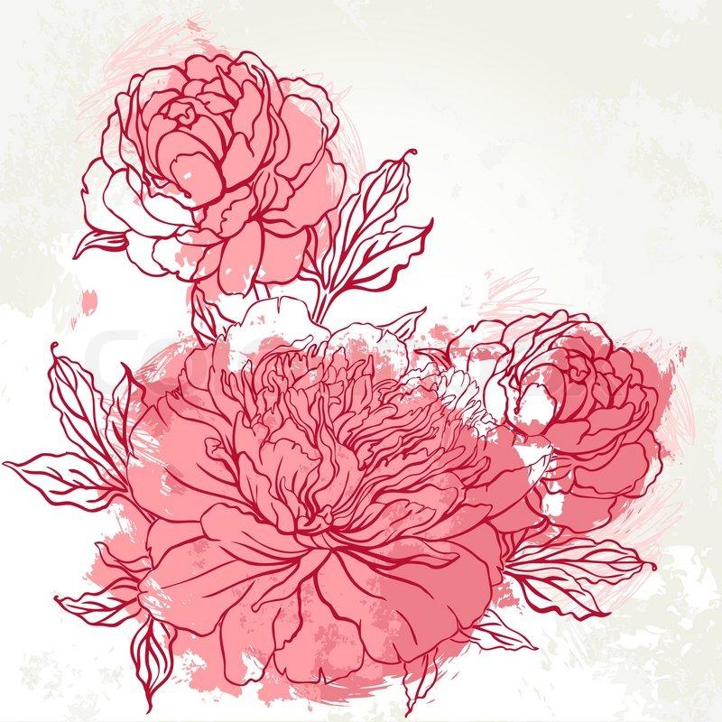 800x800 Beautiful Peony Bouquet Design On Beige Background. Hand Drawn