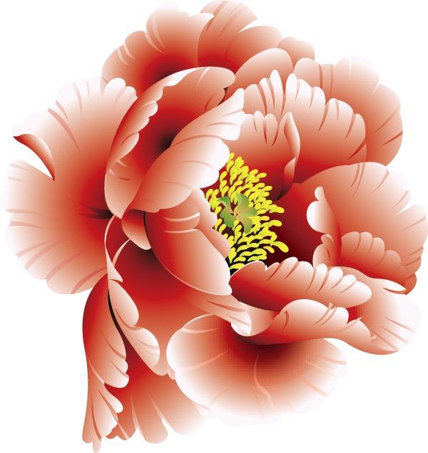 600x636 Beautiful Peony Flower Vector Graphics My Free Photoshop World