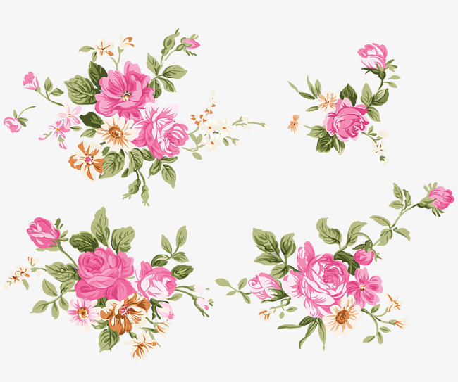 650x543 Peony Vector, Peony, Pink, Decoration Png And Vector For Free Download