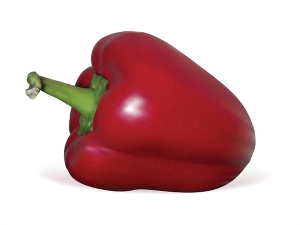 600x450 Red Pepper Vector Design With Realistic Style Free Vector In Adobe