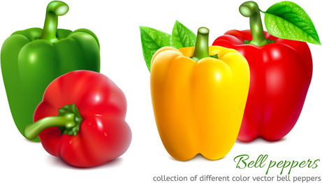 461x262 Bell Pepper Free Vector Download (758 Free Vector) For Commercial