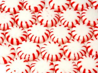 320x240 Peppermint Candy Vectors, Photos And Psd Files Free Download