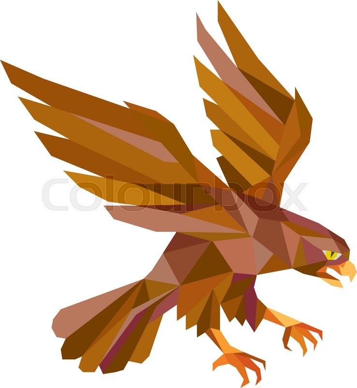 738x800 Low Polygon Style Illustration Of A Peregrine Falcon Hawk Eagle