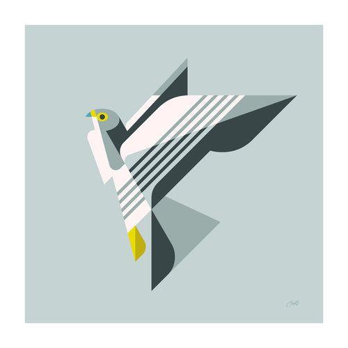 500x500 Peregrine Falcon Peregrine Falcon, Peregrine And Illustration Art