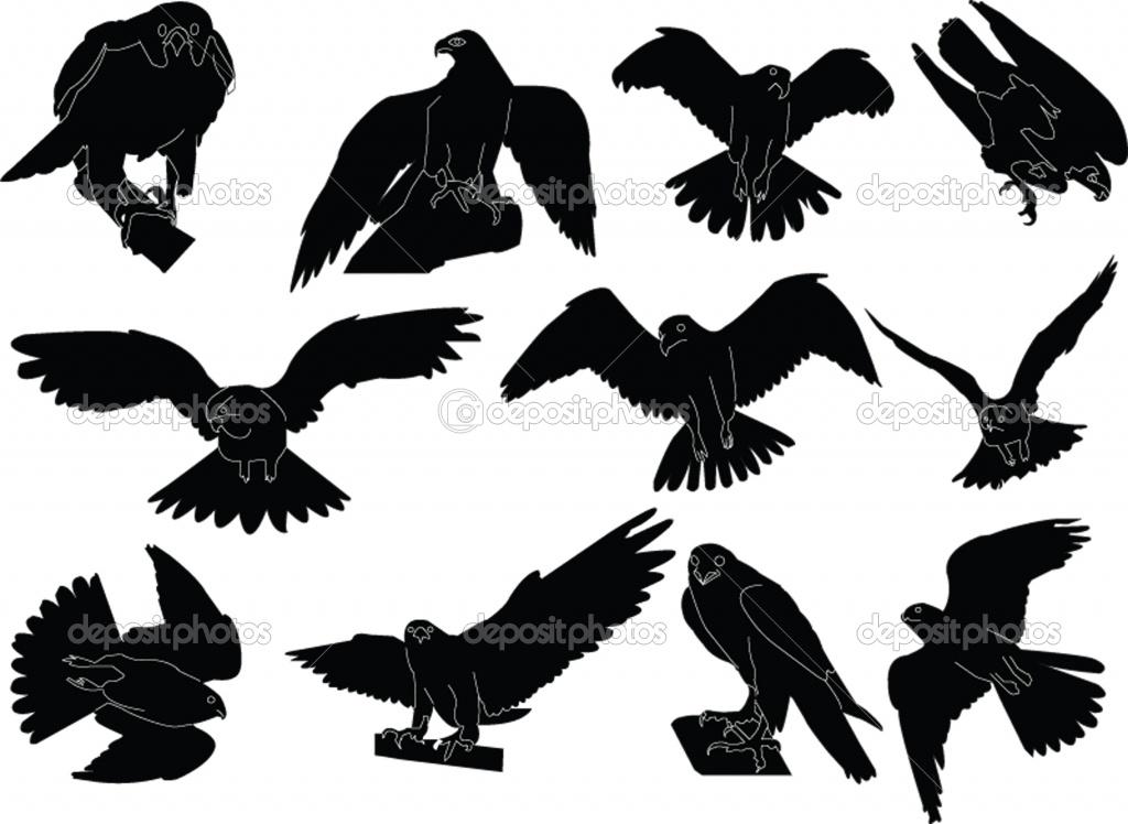 1024x748 Peregrine Falcon Clipart Silhouette 10