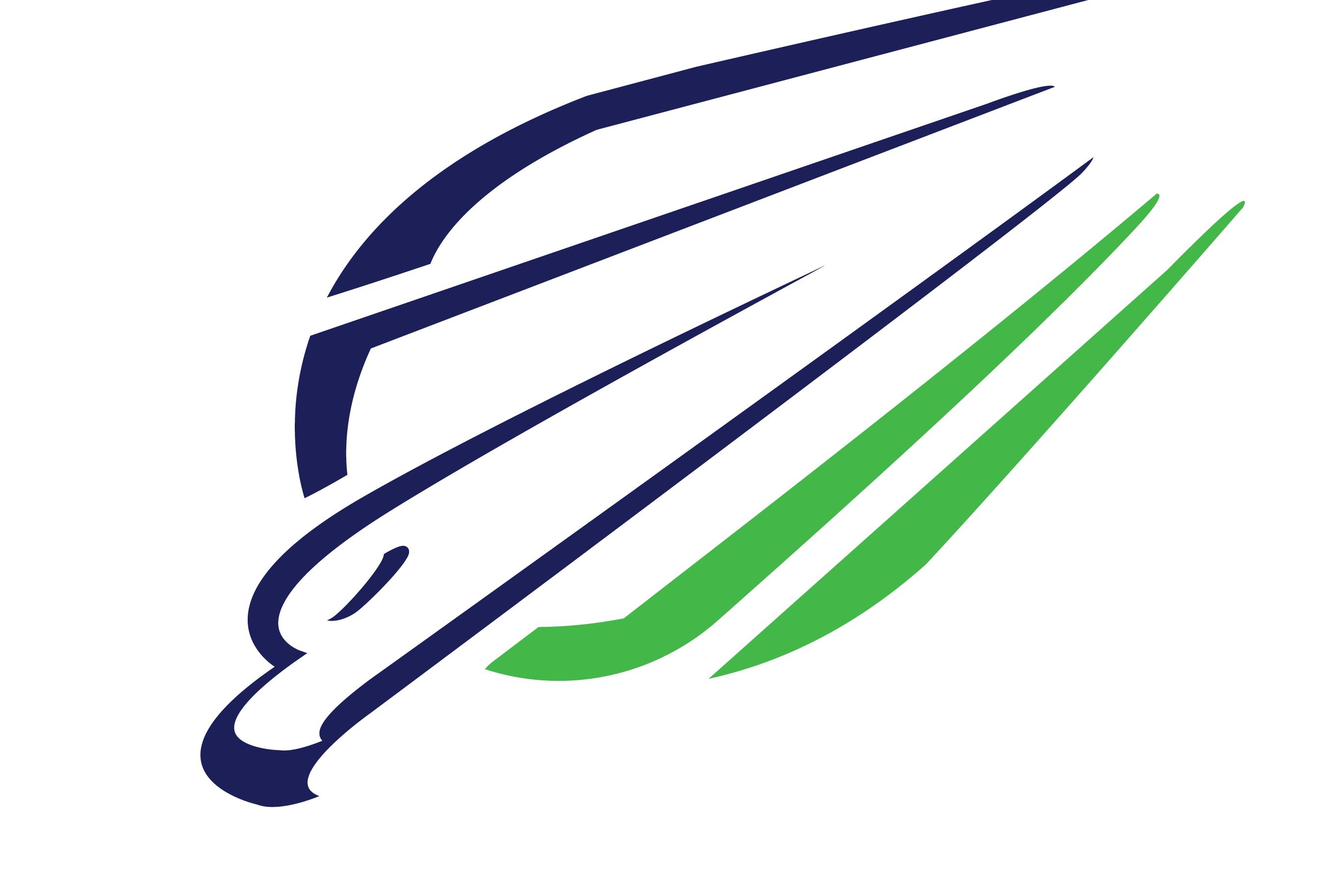 2736x1828 Peregrine Falcon Logos